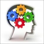 Profile Dynamics - Management Drives Drijfveren